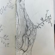 Bleistift | Skizzenblock | 21 x 13 cm